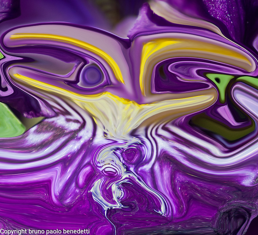 yellow and white shades on fluid violet background.