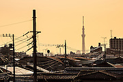 Skytree in silhouette seen above the rooftops of Shibamata, Tokyo, Japan Monday February 16th 2015.