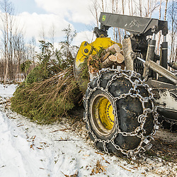 A skidder in action in a log yard in Big Six Township, Maine.