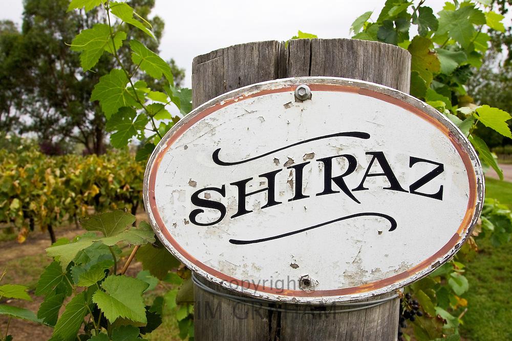 Shiraz sign in the Pepper Tree Winery, Hunter Valley, Australia