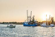 Shrimp boats on Shem Creek in Mt. Pleasant.