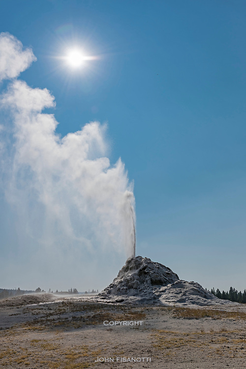 White Dome Geyser, Yellowstone National Park.  This is one of the more regularly consistent geysers in the park.