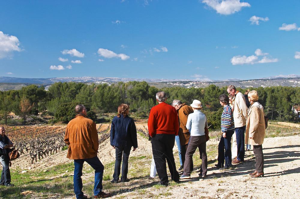 A group of visitors in the vineyard Domaine de la Tour du Bon Le Castellet Bandol Var Cote d'Azur France