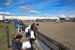 Overzicht<br /> SBB Competitie Jonge Paarden - Nationaal Kampioenschap - Kieldrecht 2014<br /> © Dirk Caremans