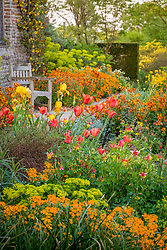 Tulips and wallfowers in the Cottage Garden at Sissinghurst Castle in spring