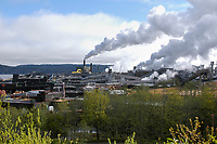 The Cambell River pulp mill, Vancouver Island, Canada   Photo: Peter Llewellyn