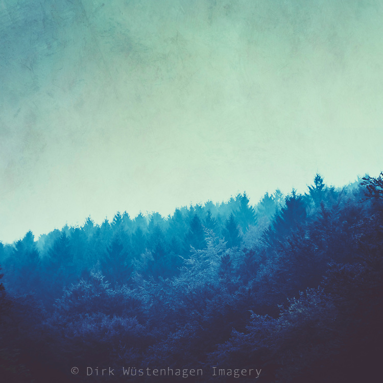 Textured and tinted photograph of a forested hill on a misty autumn morning