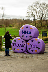 Large messages of support for the NHS are on display at the entrance to the Penicuik Estate which has had to close their car park due to the lockdown.<br /> <br /> People are finding ways to cope with the lockdown in Midlothian.