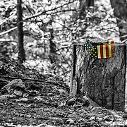 We were at the Tarrytown cemetery for Memorial Day.  Turning around, I saw this little scene which just struck me as so appropriate for the day.  I almost never include color in my black and whites but I felt this warranted the exception