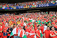 Wales fans show their support. UEFA Euro 2016, last 16 , Wales v Northern Ireland at the Parc des Princes in Paris, France on Saturday 25th June 2016, pic by  Andrew Orchard, Andrew Orchard sports photography.