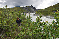 A hiker hikes next to the Thorofare River as it travels past the terminus of the 34-mile Muldrow Glacier near the Thorofare ranger cabin in Denali National Park in Alaska. The glacier has accumulated rocks and dirt in its journey down from the mountains. This moraine material, along with vegetation growing on top, hides the ice under the surface.