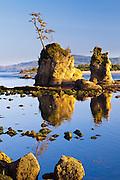 Rock stacks reflect in the harbor near Garibaldi, Oregon