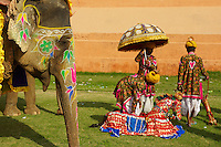 Inde, Rajasthan, Jaipur, le festival des elephants qui se deroule lors de la fete de Holi. // India, Rajasthan, Jaipur, the elephant festival.