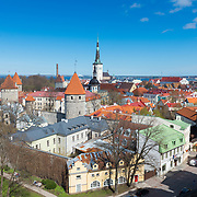 Tallinn old town from the top