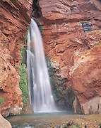 Deer Creek Falls plunges to a pool near the Colorado River. Travertine covers Bass Limestone over Vishnu Shist (river mi. 136) Grand Canyon Natl.Park, Arizona..Subject photograph(s) are copyright Edward McCain. All rights are reserved except those specifically granted by Edward McCain in writing prior to publication...McCain Photography.211 S 4th Avenue.Tucson, AZ 85701-2103.(520) 623-1998.mobile: (520) 990-0999.fax: (520) 623-1190.http://www.mccainphoto.com.edward@mccainphoto.com.