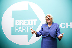 © Licensed to London News Pictures. 27/05/2019. London, UK. Ann Widdecombe MEP for South West England standing next to the Brexit Party banner at the EU election results press conference in Westminster. The newly formed Brexit Party wants the UK to leave the EU without an agreement won 10 of the UK's 11 regions, gaining 28 seats, more than 32% of the vote across the country and are largest party in nine regions. Photo credit: Dinendra Haria/LNP