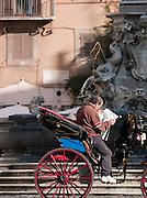 Tourist carriage driver, Piazza Della Rotonda, Rome, Italy.