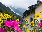 """Flowers in Chamonix, France. Mont Blanc galciers descend in the background. Published in Ryder-Walker Alpine Adventures """"Inn to Inn Alpine Hiking Adventures"""" Catalog 2006-2009, 2011, 2012."""
