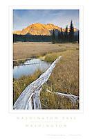Washington Pass Washington Poster