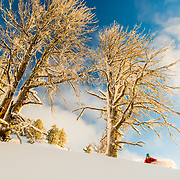 Forrest Jillson skiing early season powder in the Tetons at sunrise.
