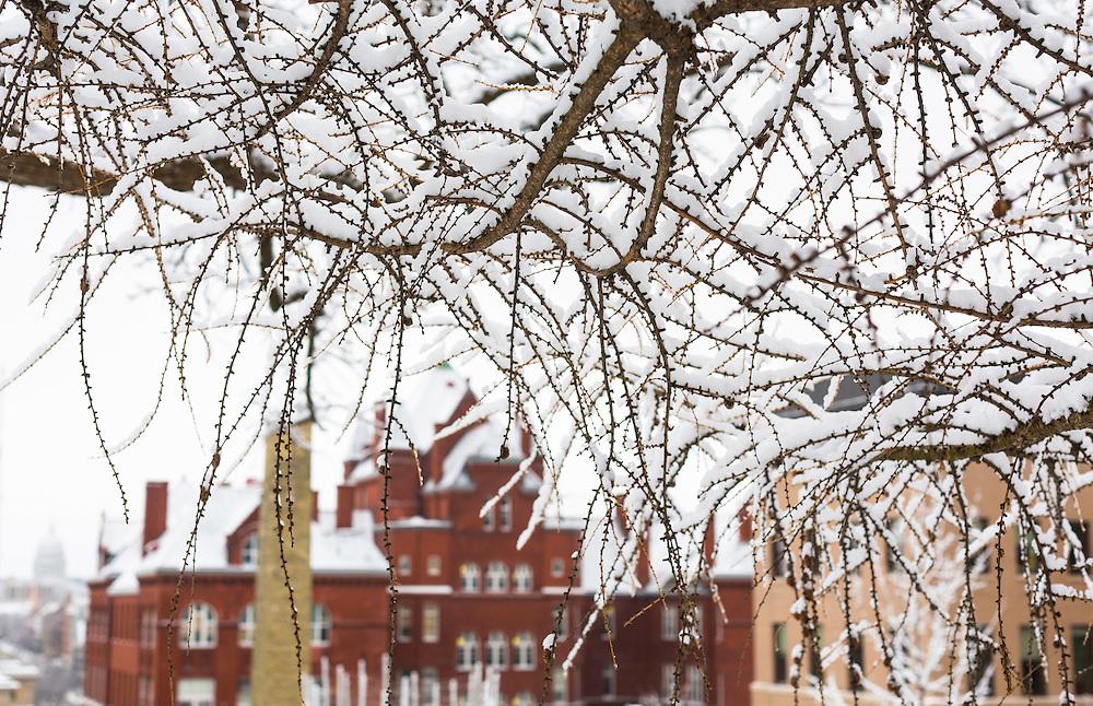 University of Wisconsin Madison campus winter Jan 26, 2016. (Photo © Andy Manis)