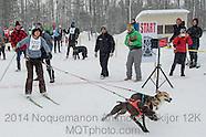 Animoosh Skijor 12K