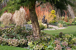 View towards 'Boy on a Rock' bronze statue by Jane Hogben. Cedrus deodara - Cedar framing the view underplanted with hellebores