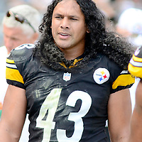 Pittsburgh Steelers strong safety Troy Polamalu (43) walks the sidewalks between the third and fourth quarter of the Steelers 30-27 win over the Cleveland Browns at Heinz Field in Pittsburgh on September 7, 2014.  UPI/Archie Carpenter
