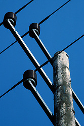 Electricity power cables and insulators on a wooden telegraph pole, England, UK.