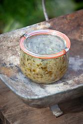 Jar of zesty fennel relish
