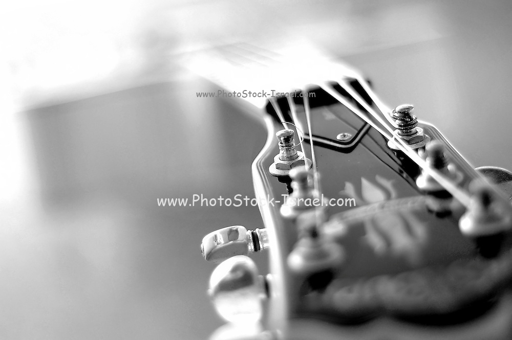 Guitar Abstract close up black and white selective focus