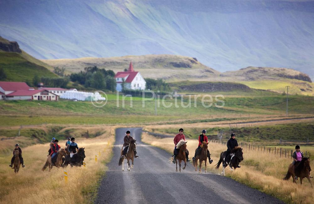 Horse riding in Southern Iceland. Riding through the farmlands of Hrunamannahreppur.
