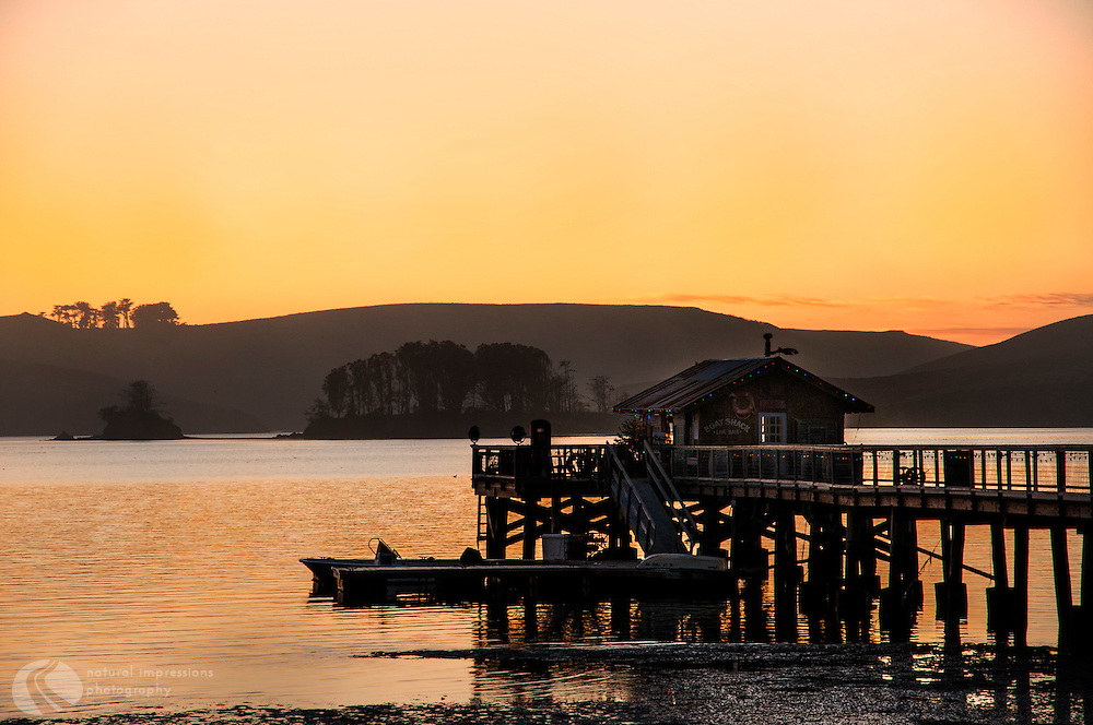 A beautiful  California sunset with Hog Island in view and where the oysters you eat today at Nick's Cove slept last night in Tomales Cove.