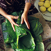 Hands of a woman making Banh Chung, a square glutinous rice cake in Thanh Khuc village, Hanoi, Vietnam. With Vietnam's growing population making less land available for farmers to work, families unable to sustain themselves are turning to the creation of various products in rural areas.  These 'craft' villages specialise in a single product or activity, anything from palm leaf hats to incense sticks, or from noodle making to snake-catching. Some of these 'craft' villages date back hundreds of years, whilst others are a more recent response to enable rural farmers to earn much needed extra income.
