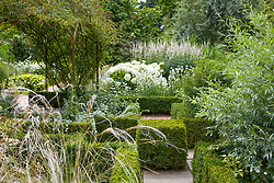 Sweet peas and solanum in the White Garden at Sissinghurst Castle with Stipa barbata in the foreground