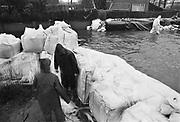 Nederland, Mook, 01-02-1995Eind januari, begin februari 1995 steeg het water van de Rijn, Maas en Waal tot record hoogte van 16,64 m. bij Lobith. Een evacuatie van 250.000 mensen was noodzakelijk vanwege het gevaar voor dijkdoorbraak en overstroming. op verschillende zwakke punten werd geprobeerd de dijken te versterken met zandzakken. Hier een nooddijk langs de Maas.Late January, early February 1995 increased the water of the Rhine, Maas and Waal to a record high of 16.64 meters at Lobith. An evacuation of 250,000 people was needed because of flood risk. At several points people tried to reinforce the dikes with sandbags. Foto: Flip Franssen/Hollandse Hoogte