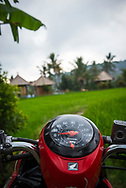 Bali, Indonesia - September 23, 2017: A Honda Scoopy scooter is parked in a rice field in Munduk, Bali. Scooters are a common means of transportation in Bali and thoughout the islands of Indonesia.