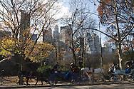 New York. hansom cabs in central park  New York, Manhattan - United states / central park  Manhattan, New York - Etats-unis