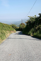 Country road in County Wicklow Ireland