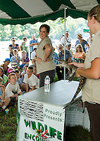 """Nicole Monkiewicz from Wildlife Encounters explains how """"Gustav"""" the Nile Crocodile held by Trisha Cheever is not an animal you would want to pet during Sanbornton Old Home Day festivities Saturday.  (Karen Bobotas/for the Laconia Daily Sun)"""
