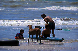 Boys with a kayak playing on Galveston beach with their dog