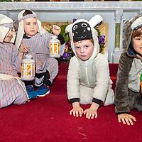 Adam Fox, Callum Currid as shepherds and Callan Rynne and Joe Sillman as a sheep and donkey in the Barefield Christmas Nativity