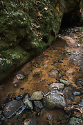 Tildurga stream and moss overgrown sandstone cliff along it in forest, Gauja National Park (Gaujas Nacionālais parks), Latvia Ⓒ Davis Ulands | davisulands.com