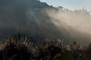 Catas Altas da Noruega_MG, Brasil...Clima frio da regiao de Catas Altas da Noruega e uma pequena cidade meio das montanhas de Minas Gerais...Cold climate of the region of Catas da Noruega, a small town between some mountains of Minas Gerais...Foto: LEO DRUMOND / NITRO