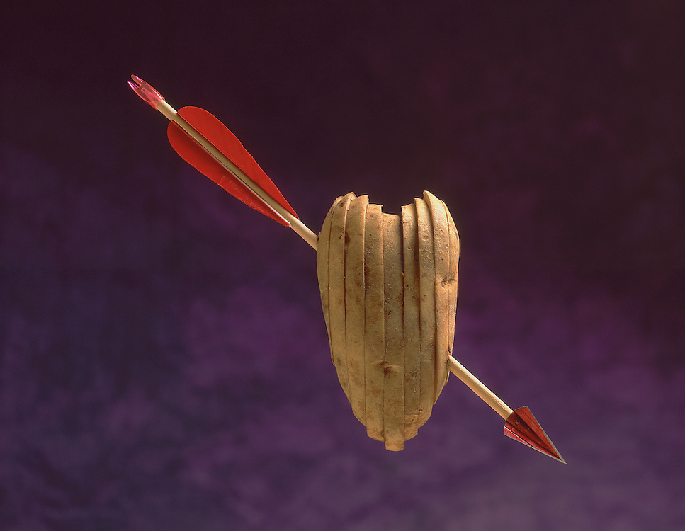 Edition of 49 includes all sizes<br /> Potato Still Life - Cupid's   Potato. First images in the Potato Series