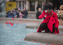 © Licensed to London News Pictures. 11/11/2013. Kitty Connolly, 7 throws poppy petals into the fountain in Trafalgar Square as part of the Royal British Legions sixth annual Armistice Day service,  Silence in the Square.     Photo credit: Alison Baskerville/LNP