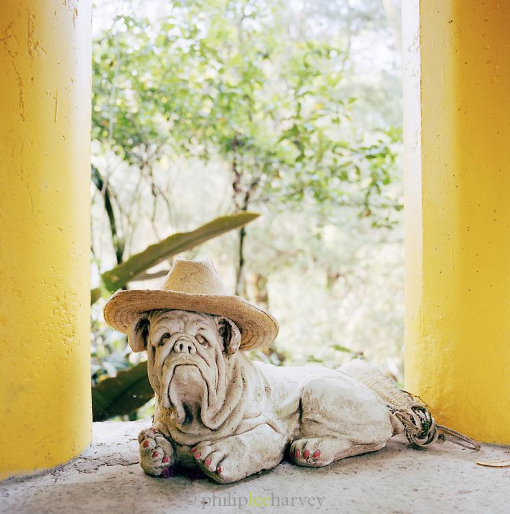 A statue of a Shar Pei at the Edward James Surrealist Gardens at Las Pozas, Xilitla, Mexico