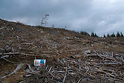 A lone castrol oil drum, discarded by loggers the Wicklow Way, a 132 km hiking trail through the Wicklow mountains. Many sections go through managed plantation forests - this path used to lead through an attractive woodland area, which has now been clearcut by Coillte, the Irish national forestry company.......Many of these forests were planted in otherwise treeless upland areas - and in some cases up to 40 times the recommended amount of fertiliser was used to make the trees grow. This is causing some problems now in areas where forests have been clearcut, with nitrates leaching into the watertable.....