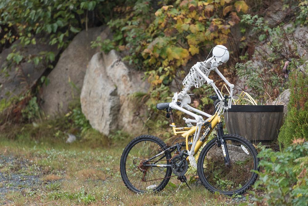 A skeleton rides a bike