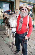 """""""Stinky"""" and his donkey Bernadine roam the streets of Virginia City, Nev., on Saturday, April 23, 2011. He is among docents who tell tales of the 19th century mining city, and gladly accepts donations to keep Bernadine in carrots. The rescue donkey is named after his wife, he said. The Comstock Lode turned Virginia City and surrounding mining communities into boomtowns as people sought their fortunes in gold and silver. (© 2011 Cindi Christie/Cyanpixel® Photography)"""